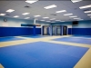 Gracie New Jersey Academy ample training area complete with octagon and soon to come heavy bags and TRX (suspension training) systems.